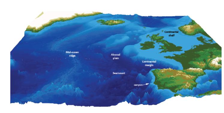 Seafloor habitats